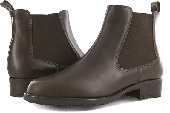 Women's Delaney Low Boot